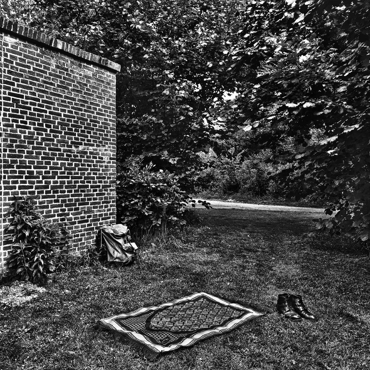 11 June 2020, Cromvliet estate, Rijswijk, Netherlands