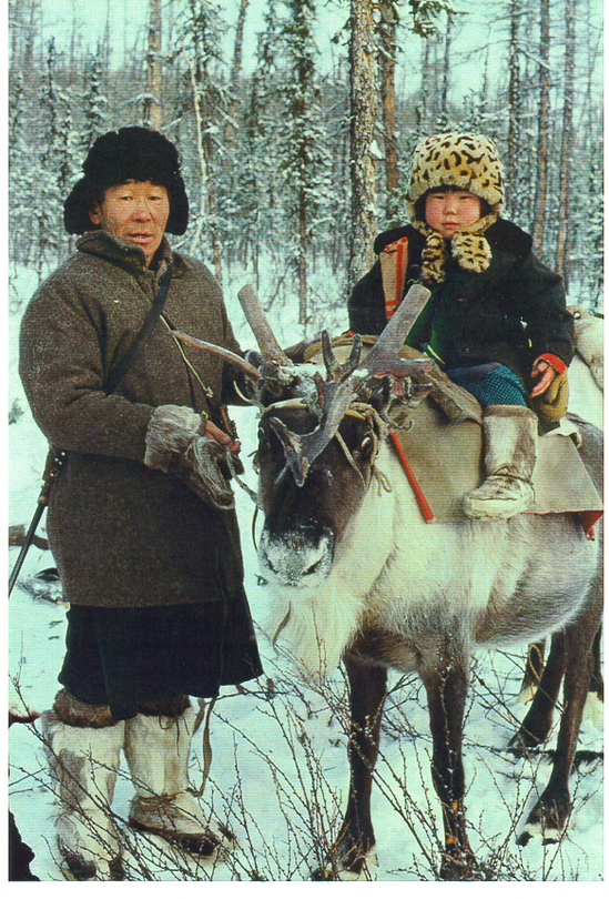 They live in the tundra half the year, following the reindeer.