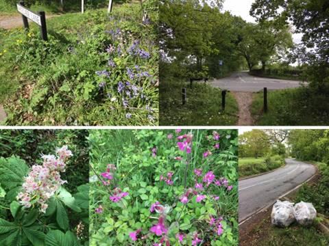 Timperley Wedge Greenbelt